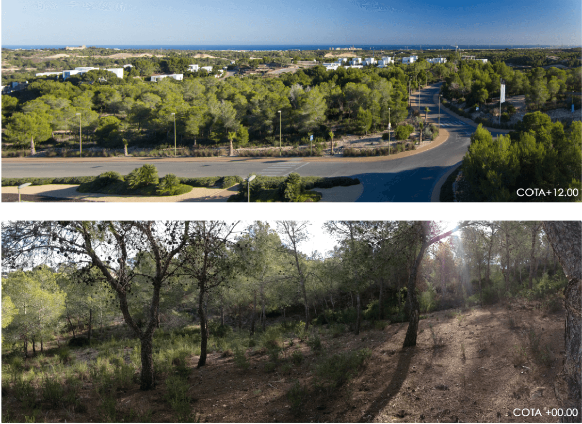 Fotografías del paisaje y parcela de Las Colinas, Orihuela