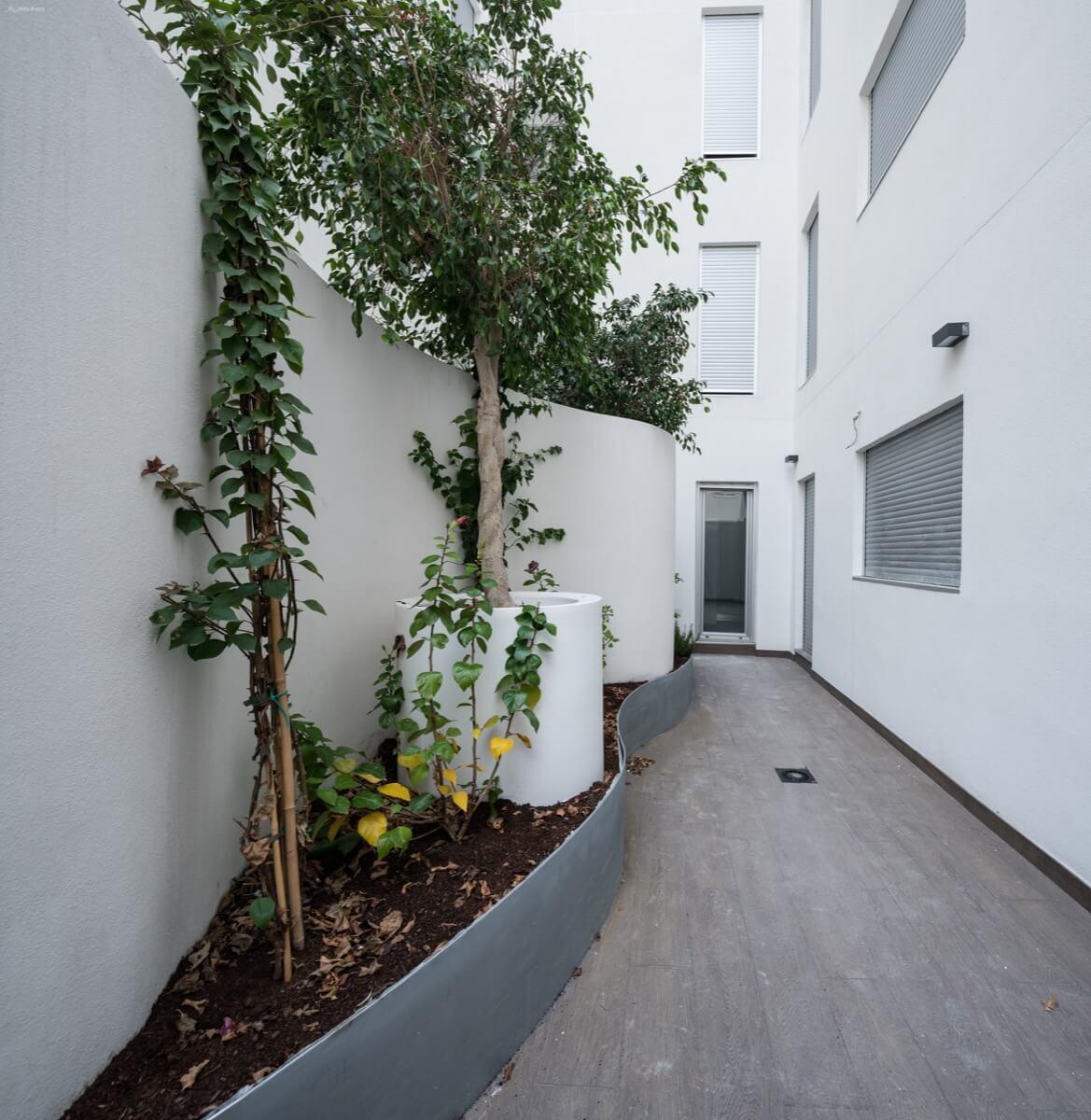Patio interior del Edificio Pintor Lorenzo Casanova. Destaca la jardinera de sinuosas curvas con vegetación