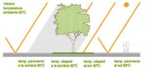 Dibujo explicativo sobre el efecto isla de calor